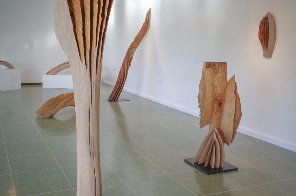 Preisträgerausstellung in Walldorf, 2017